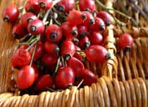 Rosehips for skincare