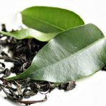 Best Green Tea Moisturizer Review