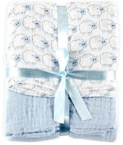 Hudson Baby 2 Count Muslin Swaddle Blanket