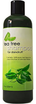 Honeydew Tea Tree Shampoo for Dandruff