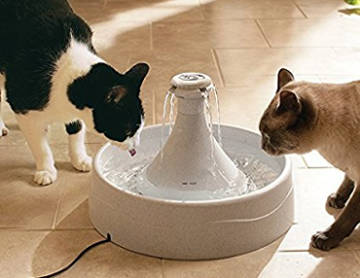 PetSafe Drinkwell 360 Fountain for Pets